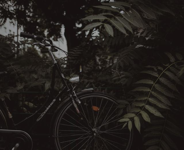 Voir les nouveaux vélos